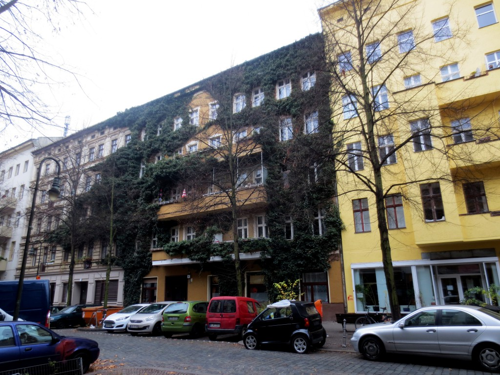Climbing plant on the front of a Kreuzberg building